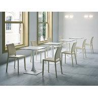 židle Pavia